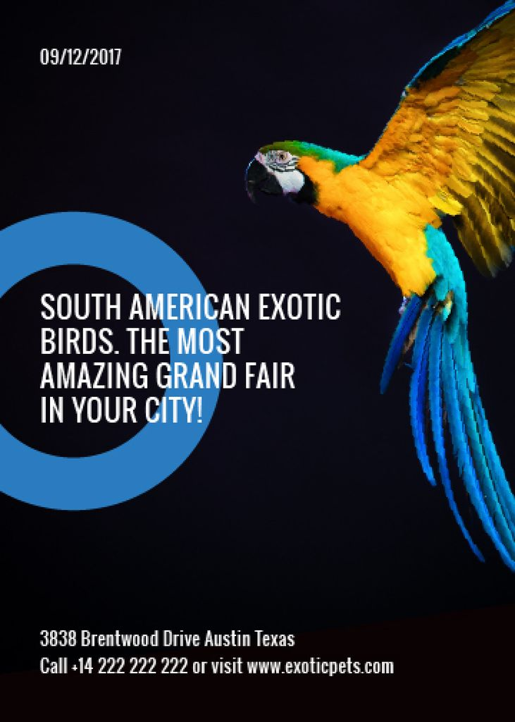 Exotic Birds fair Blue Macaw Parrot — Crea un design