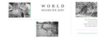 World wildlife day Annoucement