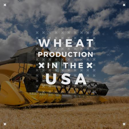 Wheat production with Combine working in Field Instagram – шаблон для дизайна