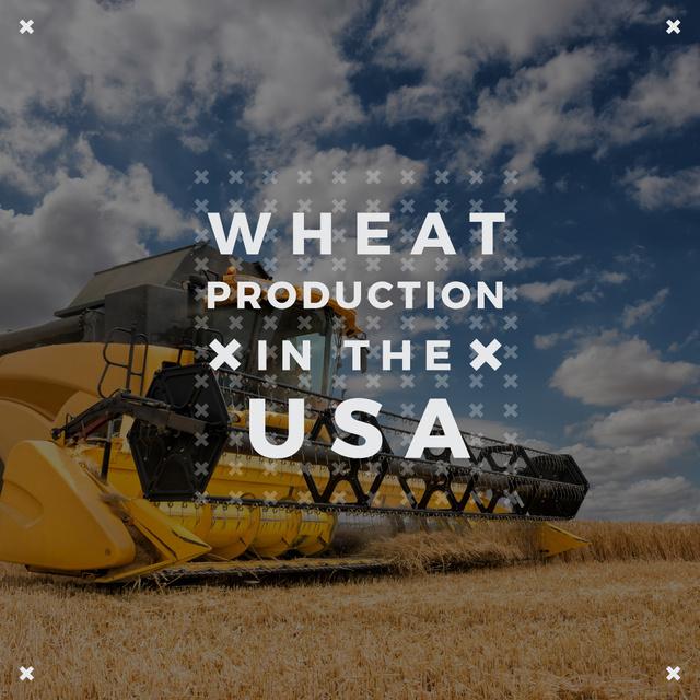 Plantilla de diseño de Wheat production with Combine working in Field Instagram