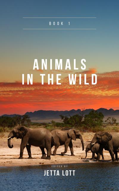 Modèle de visuel Wild Elephants in Natural Habitat - Book Cover