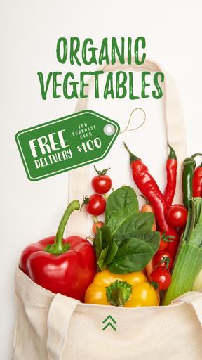 Organic Vegetables In Eco Bag