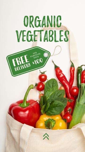 Organic Vegetables in Eco Bag Instagram Story – шаблон для дизайну