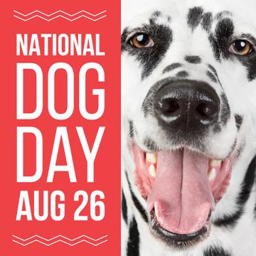 National dog day poster