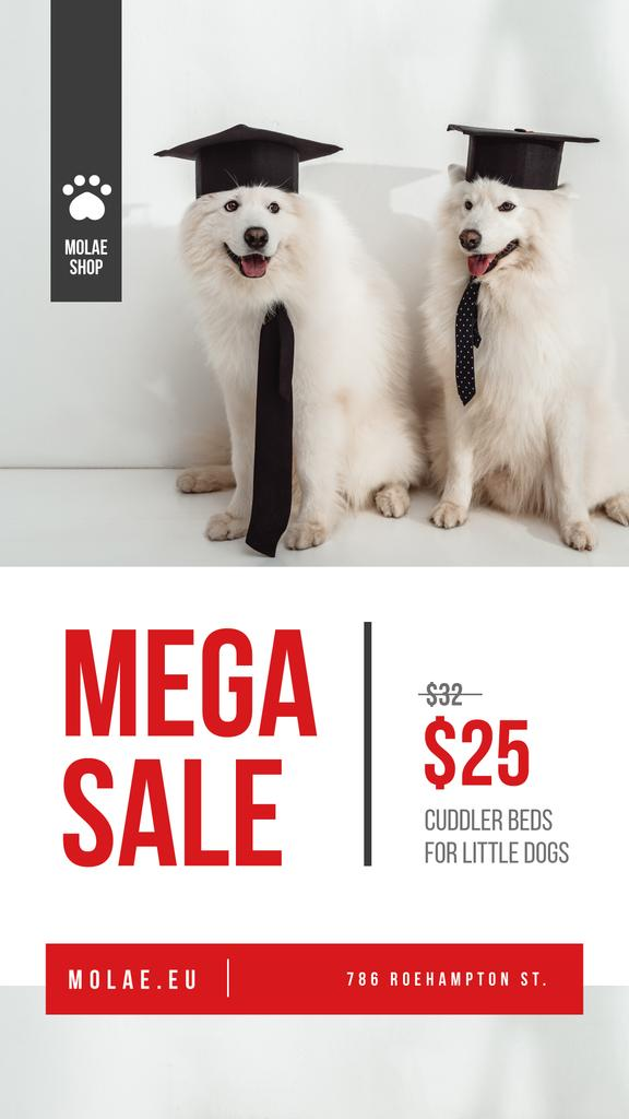 Pet Shop Offer Funny Cute Dogs — Crear un diseño