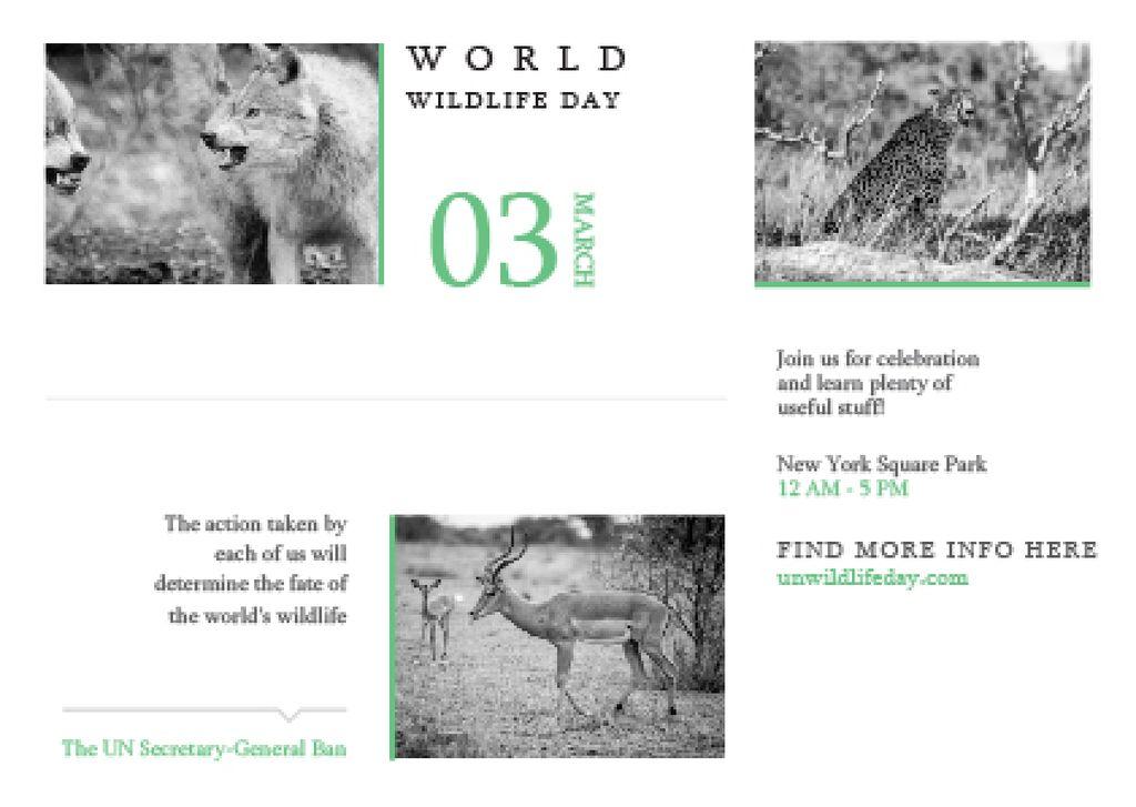 World wildlife day Announcement — Modelo de projeto