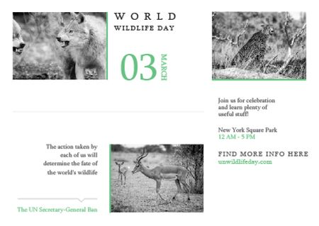 World wildlife day Announcement Postcard – шаблон для дизайну