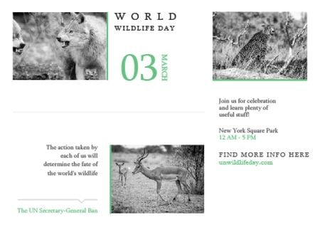 Ontwerpsjabloon van Postcard van World wildlife day Announcement