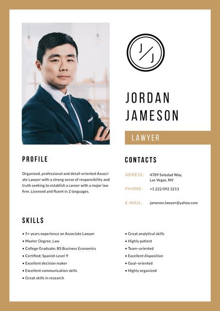 Modèle de visuel Professional Lawyer skills and experience - Resume