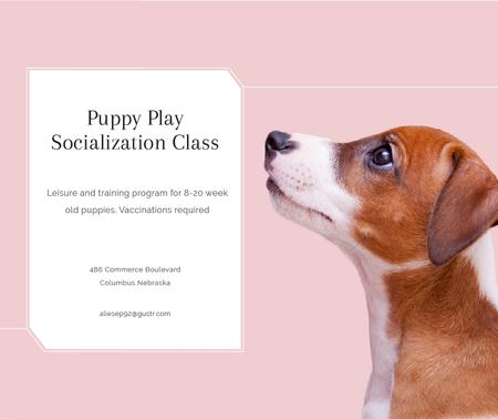 Puppy socialization class with Dog in pink Facebook Modelo de Design