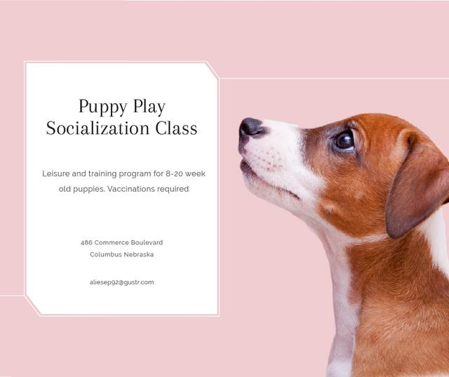 Puppy socialization class with Dog in pink Facebook Design Template