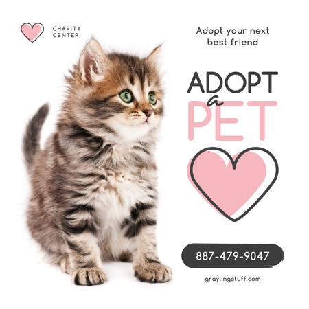 Plantilla de diseño de Adoption Center Ad Cute Grey Kitten Instagram AD
