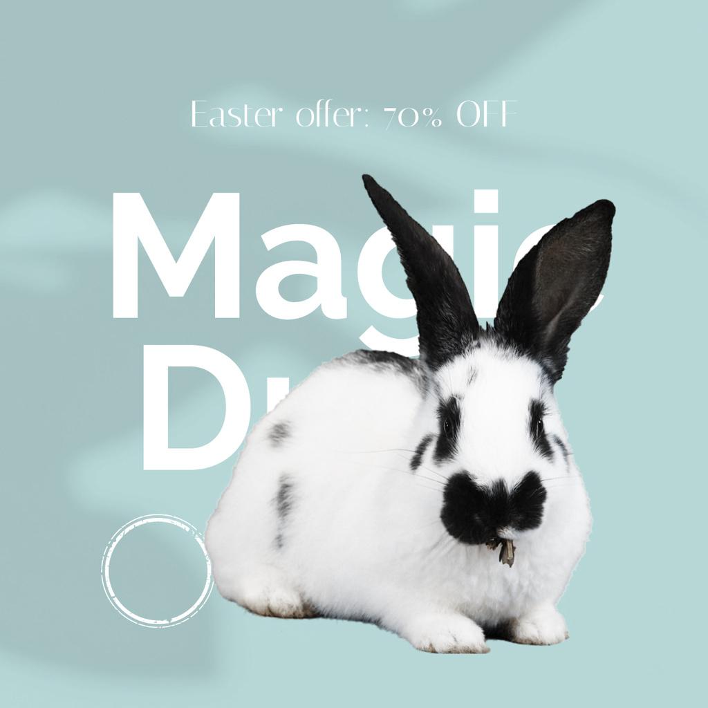 Magic Drop Offer with cute Easter Bunny — Modelo de projeto