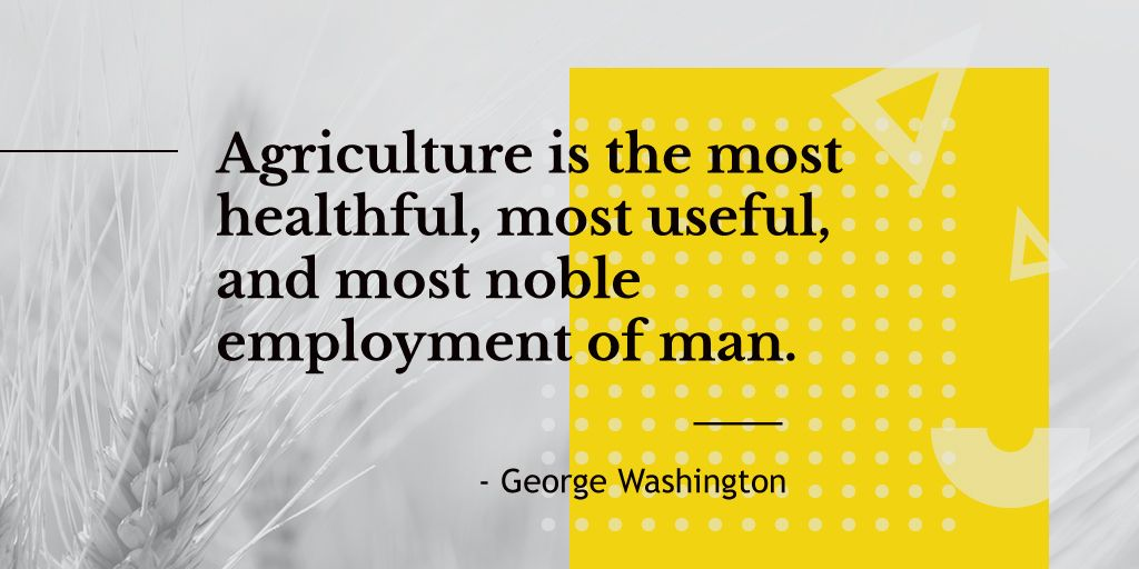 Agricultural Quote Ears of Wheat in Field | Twitter Post Template — Создать дизайн
