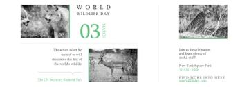 World Wildlife Day Animals in Natural Habitat