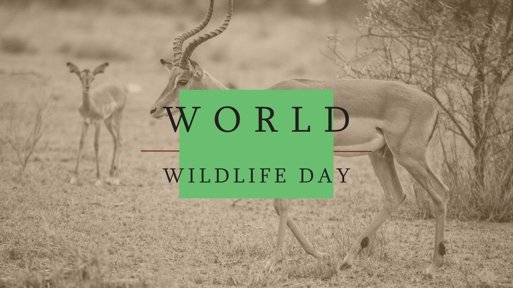 World Wildlife Day Antelope in Natural Habitat | Youtube Channel Art — Maak een ontwerp