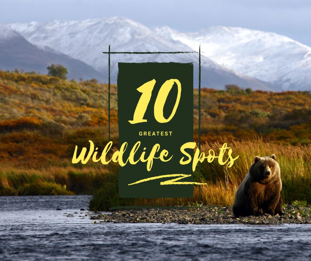 Wild bear in habitat — Створити дизайн