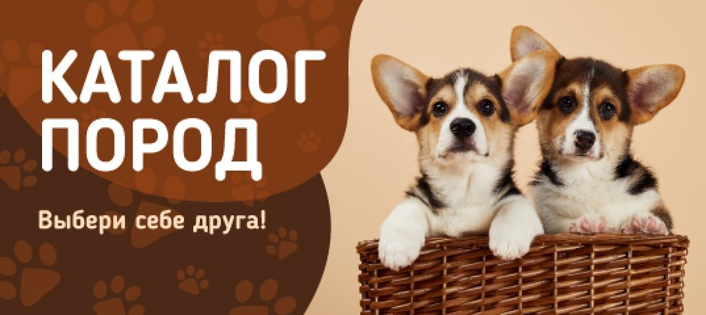 Dog Breed Guide with Corgi Puppies in Basket — Modelo de projeto