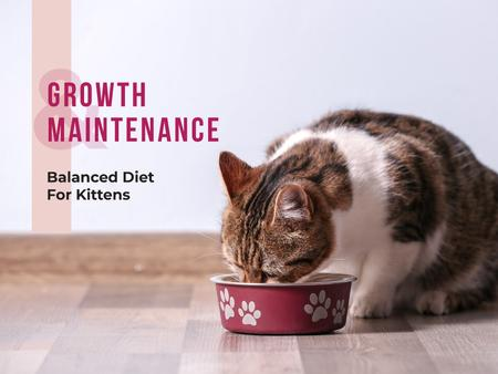 Template di design Cute cat eating from bowl on floor Presentation