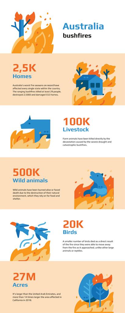 Modèle de visuel Statistical infographics about Australia bushfires - Infographic