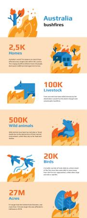 Template di design Statistical infographics about Australia bushfires Infographic