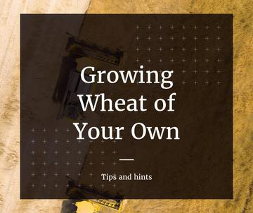 Tips and hints for growing wheat of your own poster