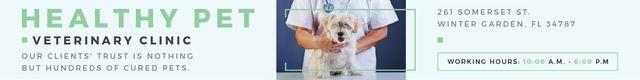 Healthy pet veterinary clinic Leaderboard Modelo de Design