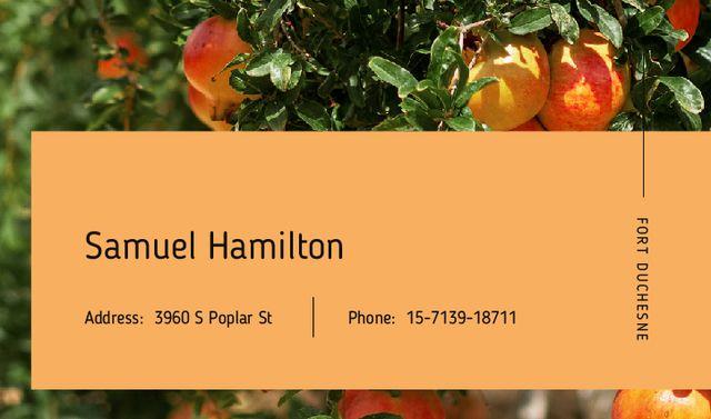 Designvorlage Ripe Apples on a Tree für Business card