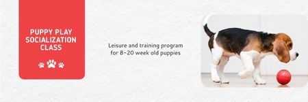 Puppy play socialization class Email header Modelo de Design