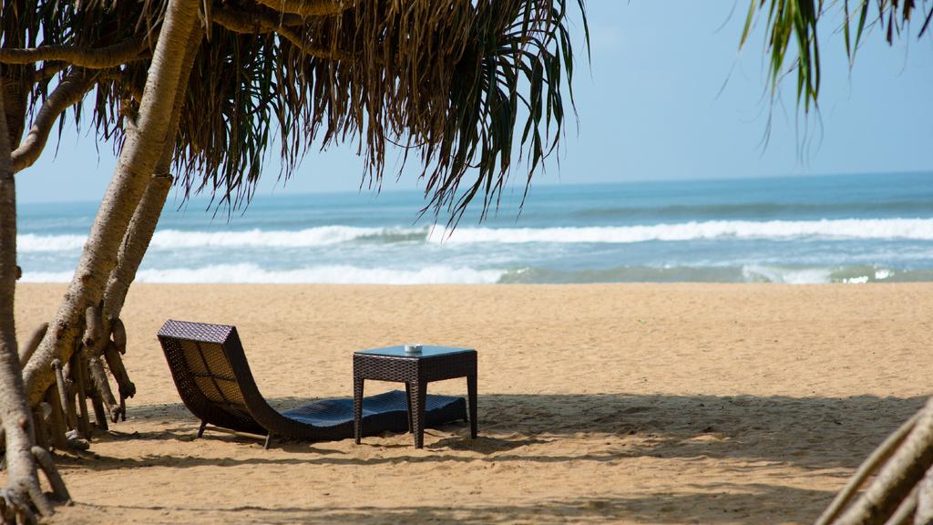 Tropical landscape of Ocean coast —デザインを作成する