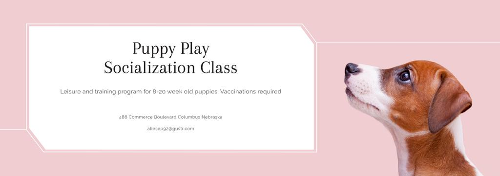 Puppy socialization class with Dog in pink — Crear un diseño