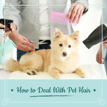 Pet hair salon poster