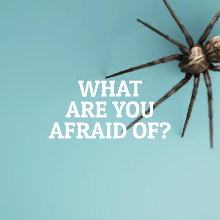 Spider creeping on blue background Animated Post Modelo de Design