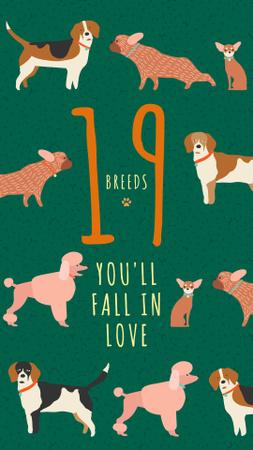 Plantilla de diseño de Different dog breeds on green Instagram Story