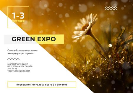 Ontwerpsjabloon van VK Universal Post van Nature Expo Announcement with Blooming Daisy Flower
