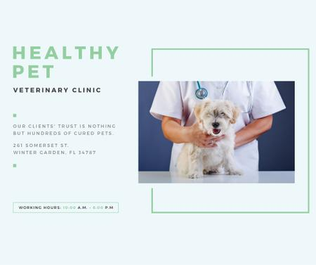 Ontwerpsjabloon van Facebook van Vet Clinic Ad Doctor Holding Dog