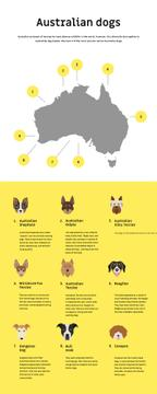 Informational infographics about Australian dogs