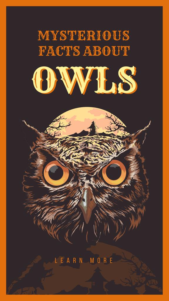 Wild owl bird illustration — Modelo de projeto