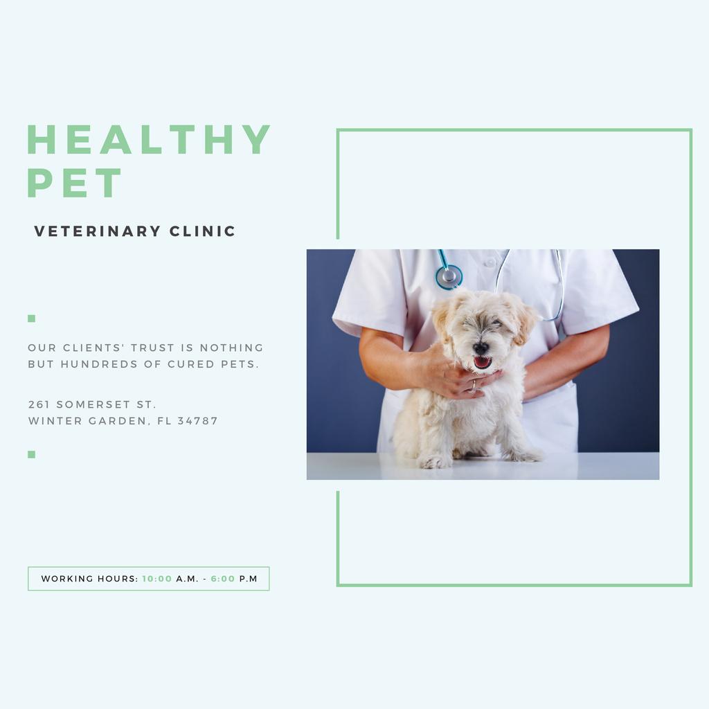 Veterinarian holding Puppy in Clinic Instagram Modelo de Design