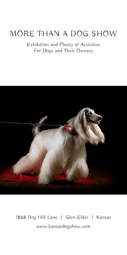 Dog Show announcement with pedigree pet Graphic Modelo de Design