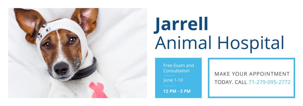 Jarrell Animal Hospital — Créer un visuel