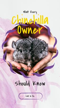 Designvorlage Woman holding two chinchillas für Instagram Story