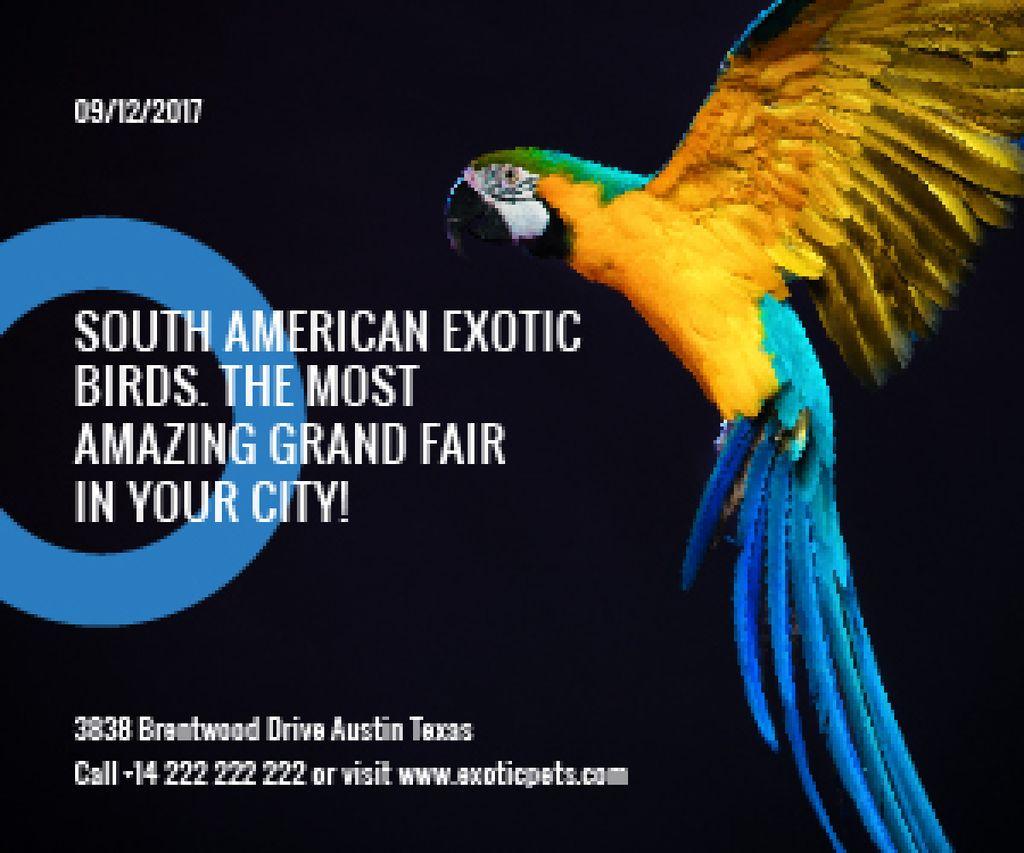 South American exotic birds shop — Create a Design
