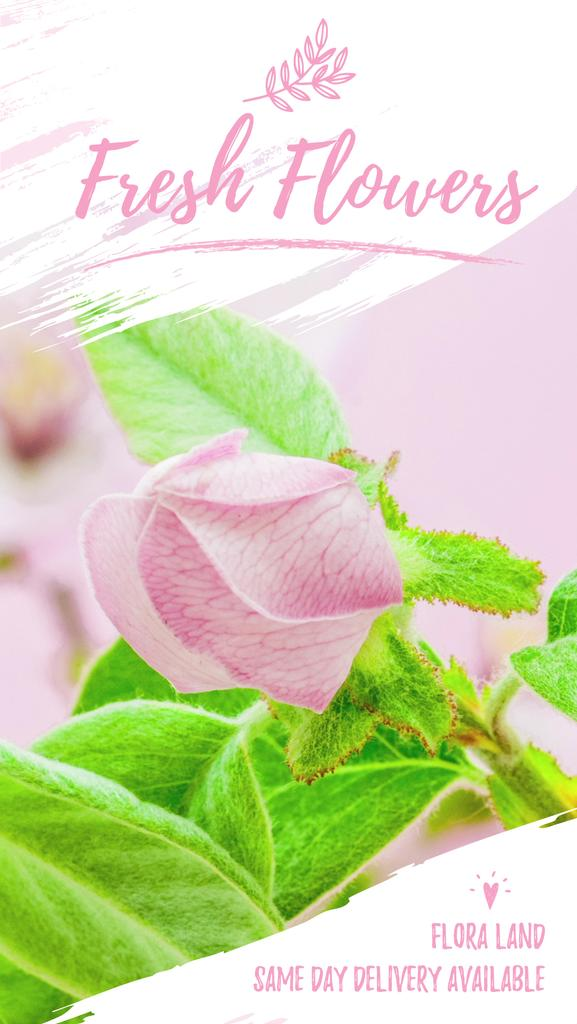 Blooming Pink Flower Time Lapse | Vertical Video Template — ein Design erstellen