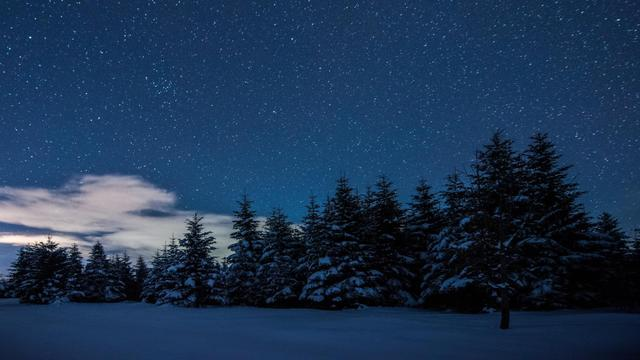 Plantilla de diseño de Snowy Forest at starry Winter night Zoom Background