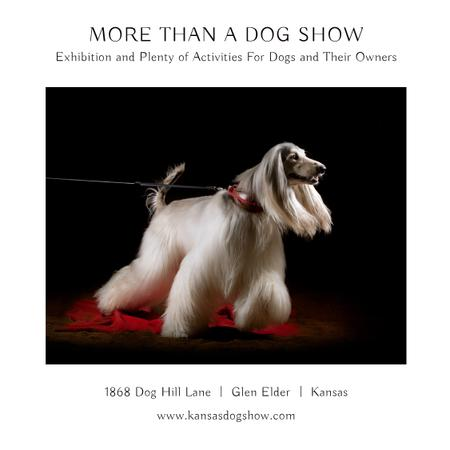 Ontwerpsjabloon van Instagram AD van Dog Show announcement with pedigree pet