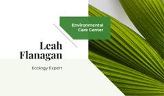 Green Plant Leaves Frame