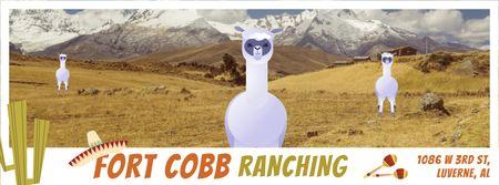 Funny lamas in pampas Facebook Video cover – шаблон для дизайну