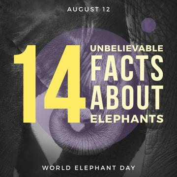 World elephants day poster