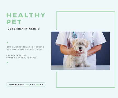 Plantilla de diseño de Healthy pet veterinary clinic Large Rectangle